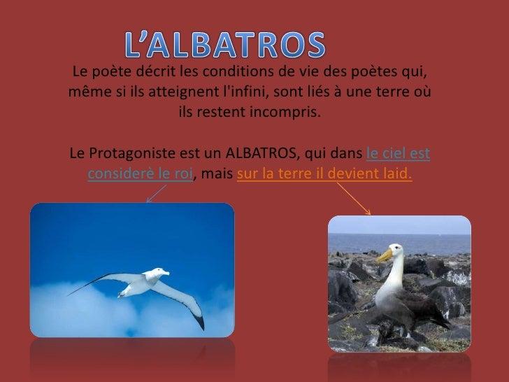 L'ALBATROS<br />Le poète décrit les conditions de vie des poètes qui,  même si ils atteignent l'infini, sont liés à une te...