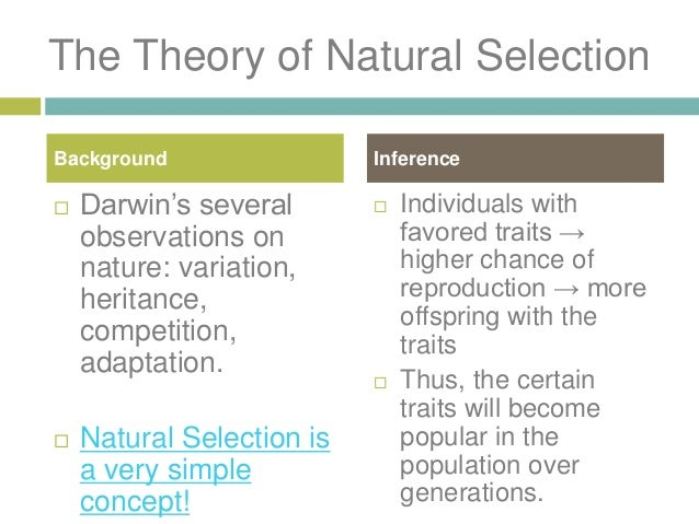 Theory Of Evolution of Natural Selection by DARWIN