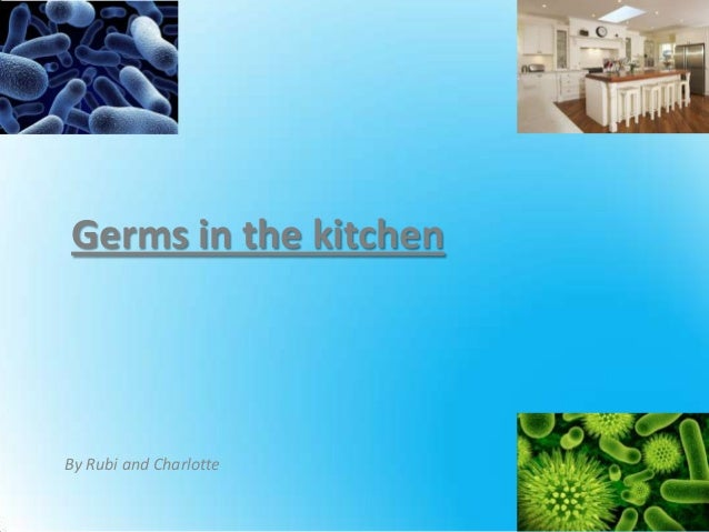 Germs in the kitchen By Rubi and Charlotte