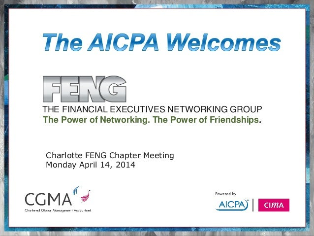 THE FINANCIAL EXECUTIVES NETWORKING GROUP The Power of Networking. The Power of Friendships. Charlotte FENG Chapter Meetin...