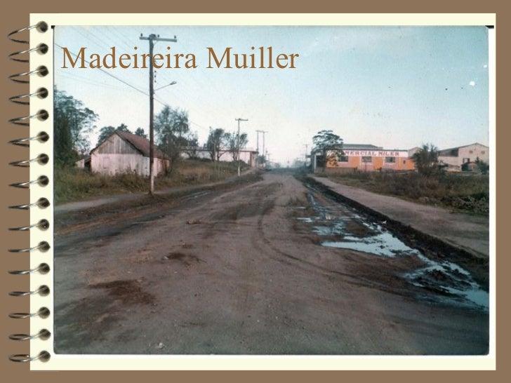 Madeireira Muiller