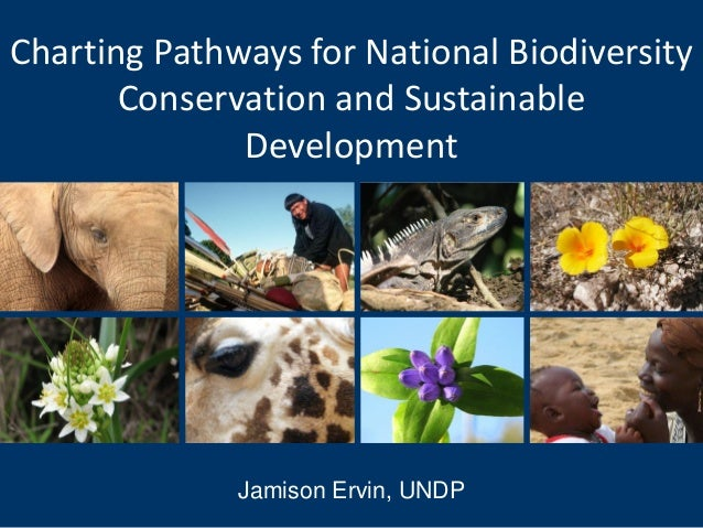 Charting Pathways for National Biodiversity       Conservation and Sustainable              Development              Jamis...