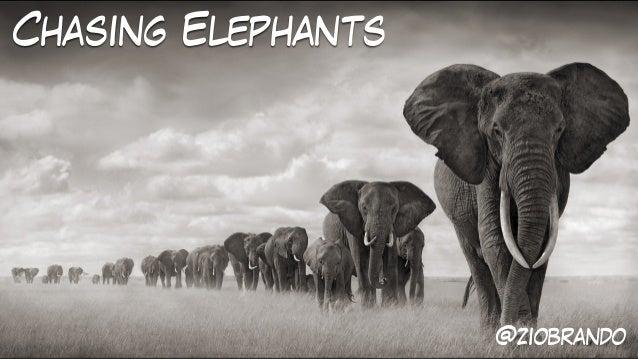 Chasing Elephants @ziobrando