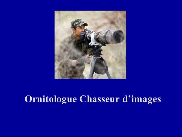 Ornitologue Chasseur d'images