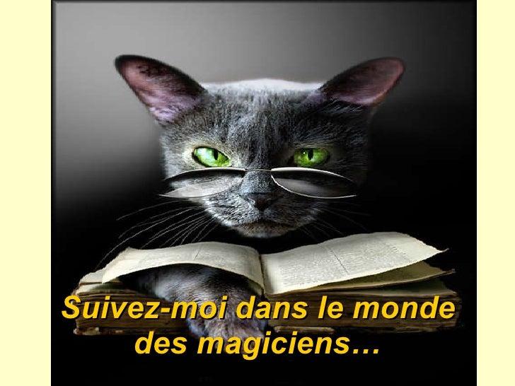 Suivez-moi dans le monde des magiciens …