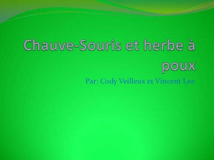 Chauve-Souris et herbe à poux<br />Par: Cody Veilleux et Vincent Lee<br />