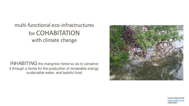 multi-functional eco-infrastructures for COHABITATION with climate change INHABITING the mangrove forest so as to conserve...