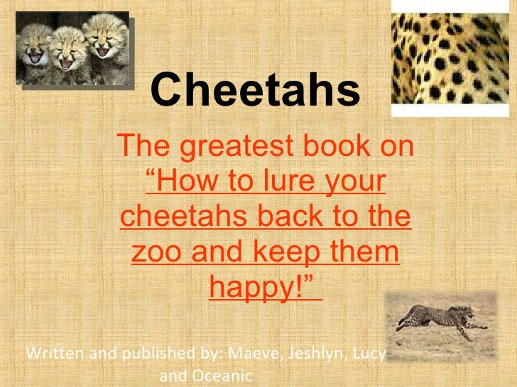 "Cheetahs The greatest book on  ""How to lure your cheetahs back to the zoo and keep them happy!""  Written and published by:..."