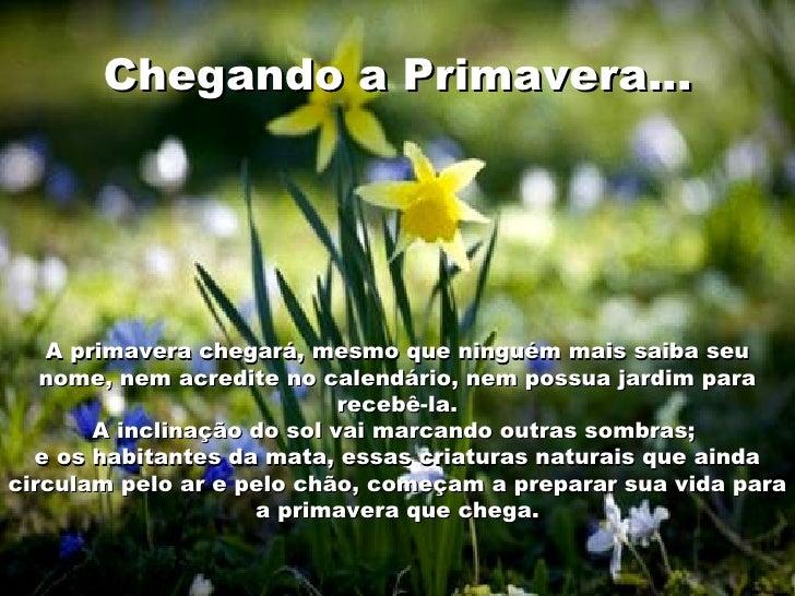 Chegando aPrimavera… A primavera chegará, mesmo que ninguém mais saiba seu nome, nem acredite no calendário, nem possua j...