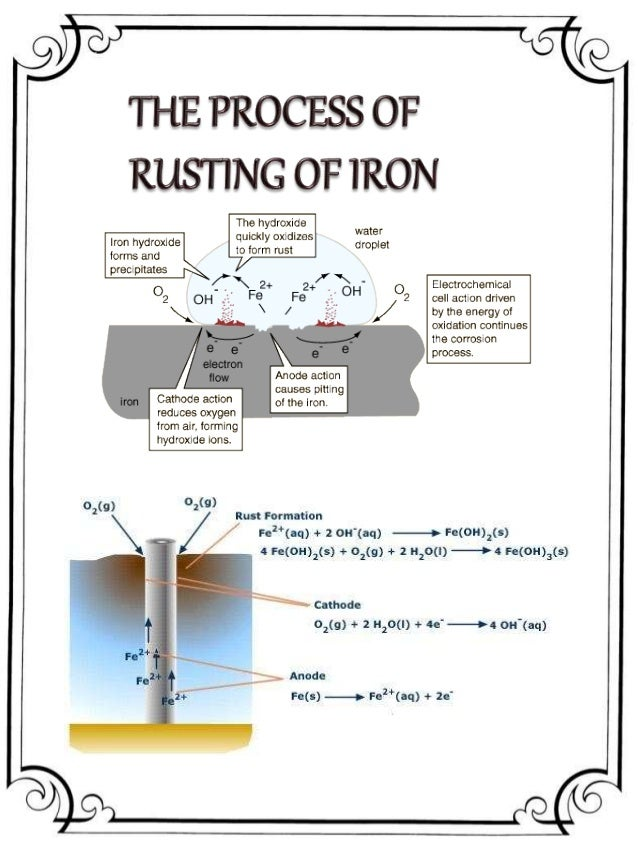 RUSTING OF IRON PROJECT CLASS 12 PDF DOWNLOAD