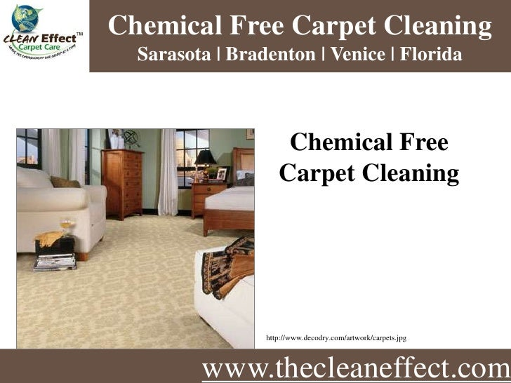 www.thecleaneffect.com Chemical Free Carpet Cleaning  Sarasota, Bradenton & Venice Florida