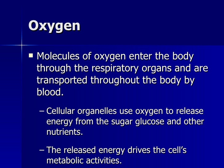 organelle release oxygen Mitochondria are very small organelles using oxygen to release energy those proteins take food molecules and combine them with oxygen (o 2) the mitochondria are the only place in the cell where oxygen can be combined with the food molecules.