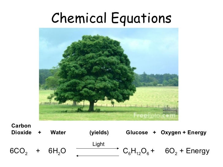 Chemical Equations 6CO 2  +  6H 2 O  Carbon  Dioxide  +  Water  (yields)  Glucose  +  Oxygen   + Energy C 6 H 12 O 6  +  6...