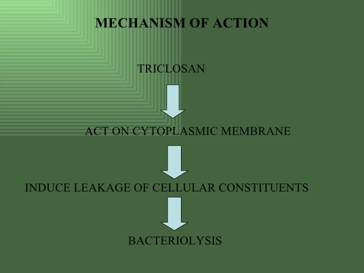 ionic mechanism propagation of action Ionic mechanisms of action potential rate dependence,  (nz) and ebz myocytes were incorporated into one-dimensional models of propagation to.