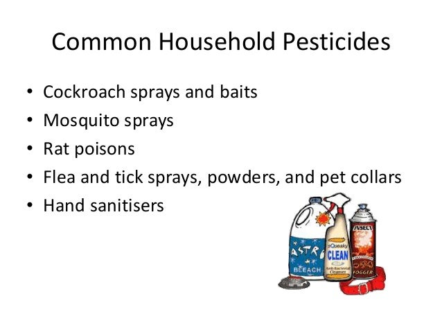 Chemicals Around The Home