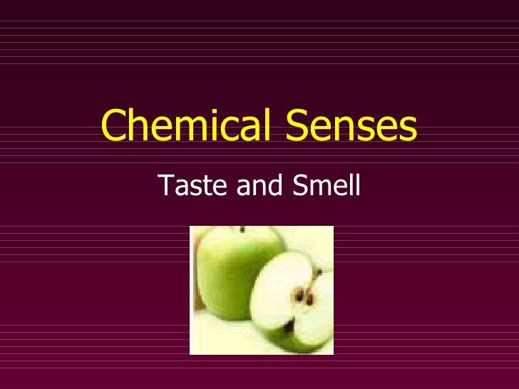 Chemical Senses Taste and Smell