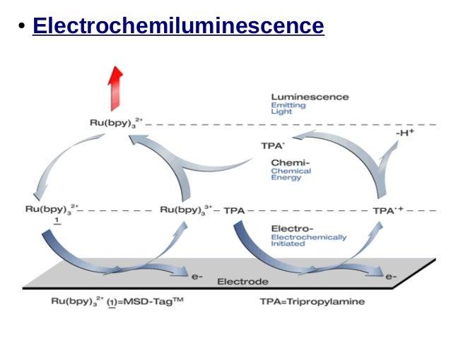 Chemiluminescence Assay