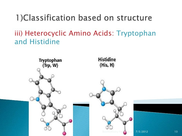 Amino Acid Examples