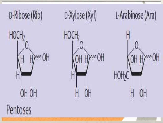 STRUCTURAL ASPECTS • ISOMERISM IN MONOSACCHARIDES 1. Stereo isomerism 2. Enantiomers 3. D & L isomers 4. Optical isomers 5...