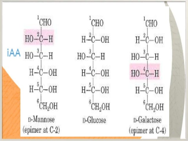 ANOMERS • Anomeric carbon by giving an additional chiral carbon makes the total isomers 25. (32) • Anomeric carbon gives 2...