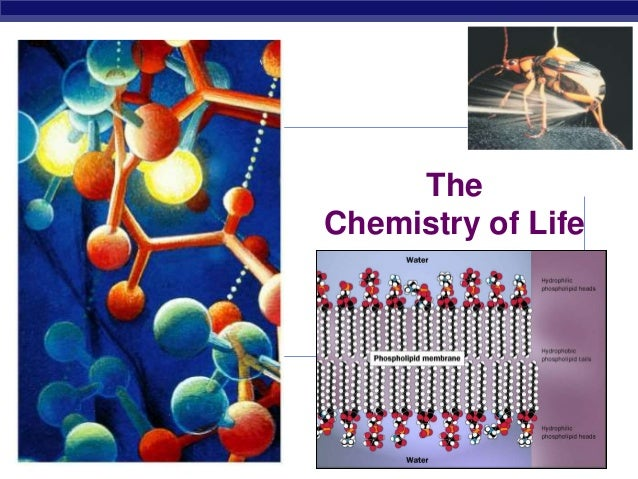 chemistry life in daily life Chemistry is a big part of your everyday life you find chemistry in daily life in the  foods you eat, the air you breathe, cleaning chemicals, your.
