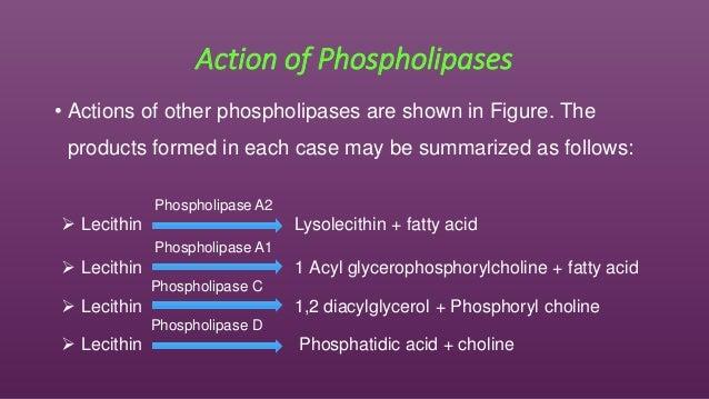 phospholipase a1 supplier relationship