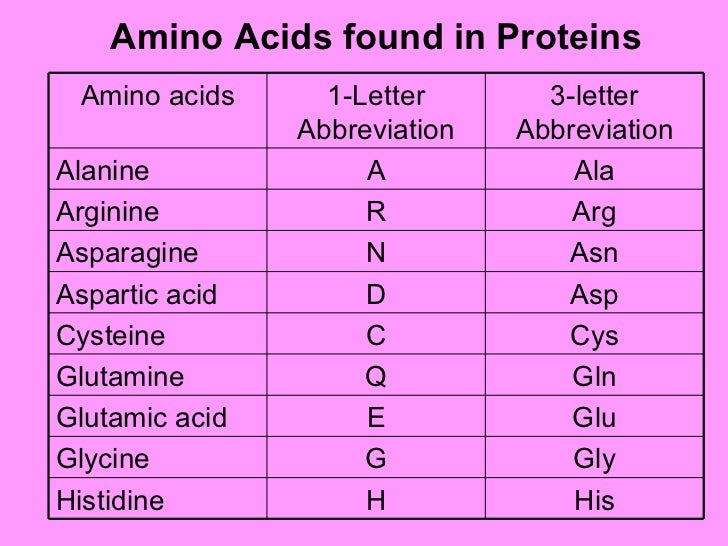 Chemistry of proteins amino acids thecheapjerseys Images