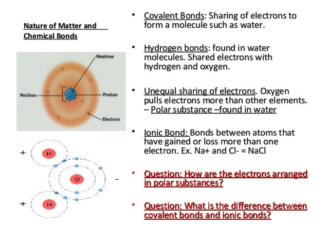 Biology Chemistry Overview and Properties of Water