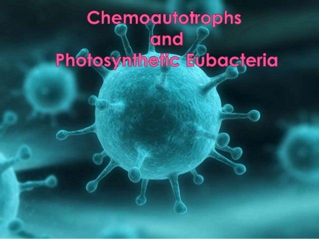 troph =  nourishment  auto = self  chemo =  chemical  chemoutotrophs
