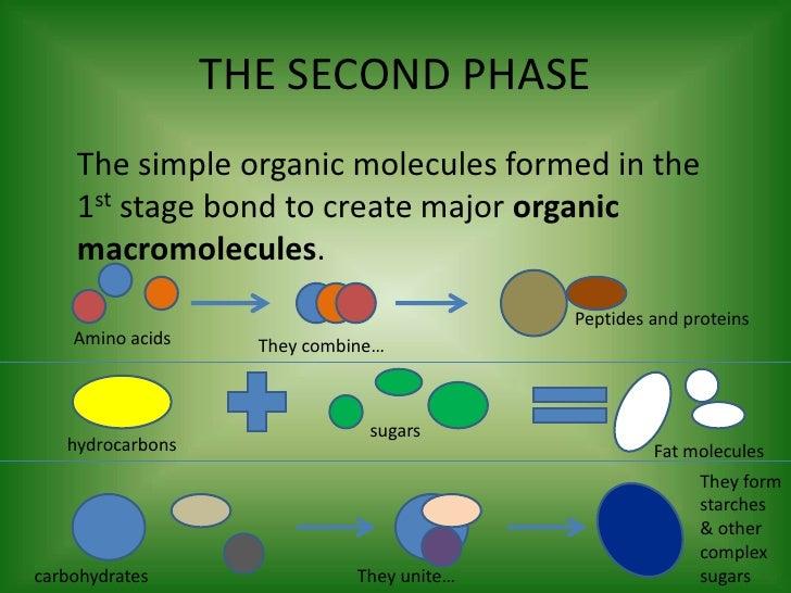 chemosynthetic theory