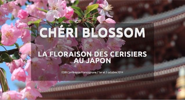 Chéri Blossom: La floraison des cerisiers au Japon