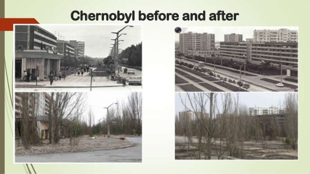 the cause and effects of the chernobyl powerplant disaster .