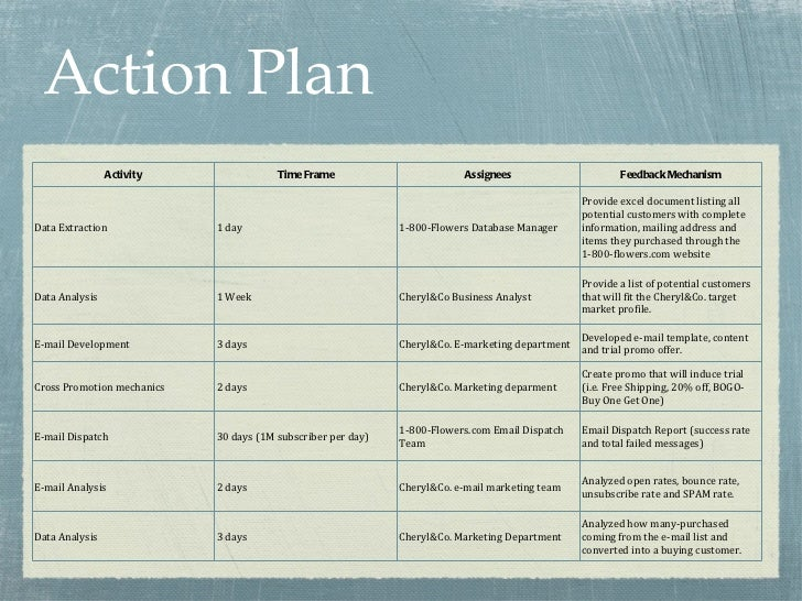 Cheryl co case presentation for Sales manager action plan template