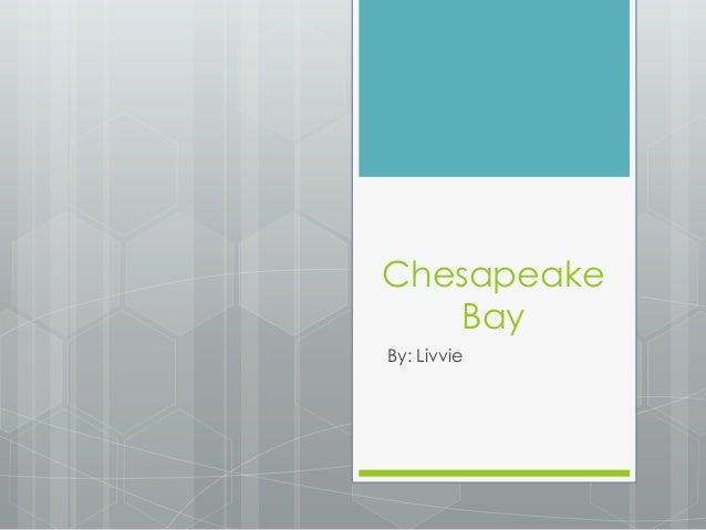 ChesapeakeBayBy: Livvie