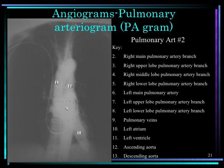 Angiograms-Pulmonaryarteriogram (PA gram)                         Pulmonary Art #2               Key:               2.    ...