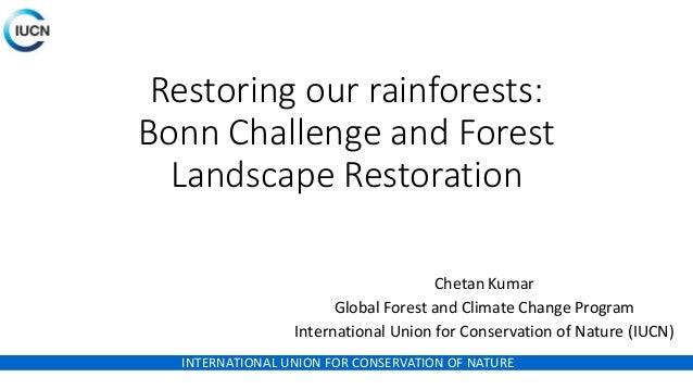 INTERNATIONAL UNION FOR CONSERVATION OF NATURE Restoring our rainforests: Bonn Challenge and Forest Landscape Restoration ...