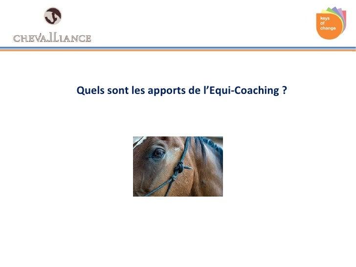Quels sont les apports de l'Equi-Coaching?