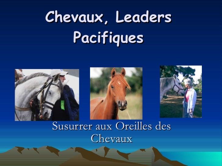 Chevaux, Leaders Pacifiques Susurrer aux Oreilles des Chevaux