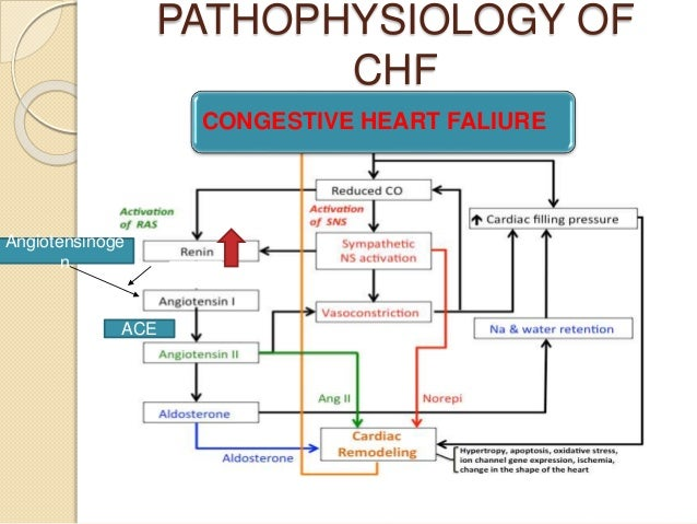 CHF BY SAYAMDEEP ROY B PHARM