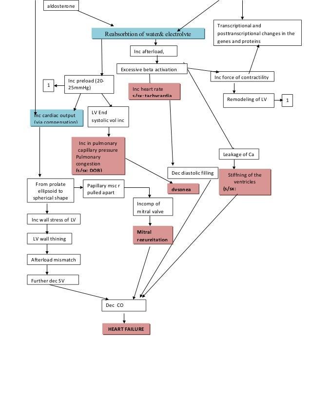 congestive heart failure pathophysiology