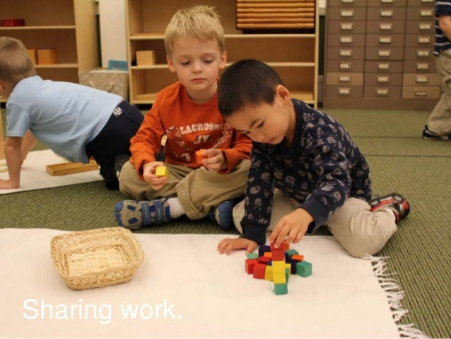 PROGRAM AREAS         instead of using nouns to design…GymLearning Resource RoomsPerformance AreaKitchen and CaféMeeting S...