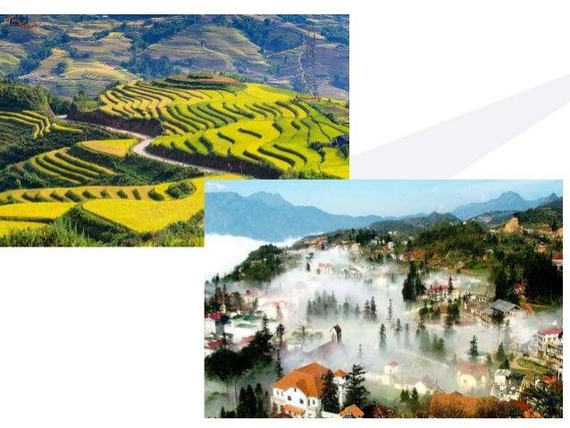 Du Lịch Việt Nam 2.9 7.9 14.5 57.0 2004 2015 International Local Added 5.3 million Sapa: 2014 - 800.000 2015 – 1,5 tr