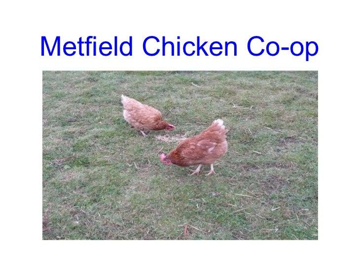 Metfield Chicken Co-op