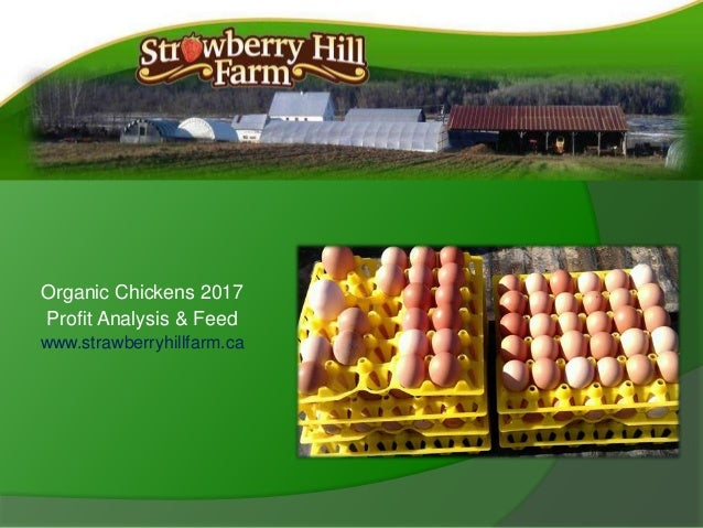 Organic Chickens 2017 Profit Analysis & Feed www.strawberryhillfarm.ca