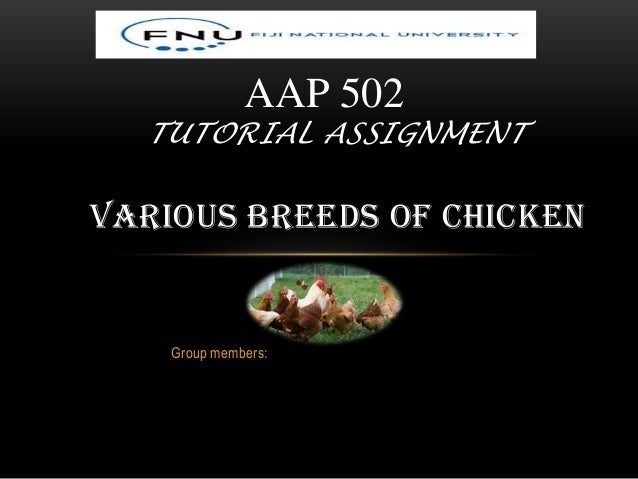 Group members: AAP 502 TUTORIAL ASSIGNMENT VARIOUS BREEDS OF CHICKEN