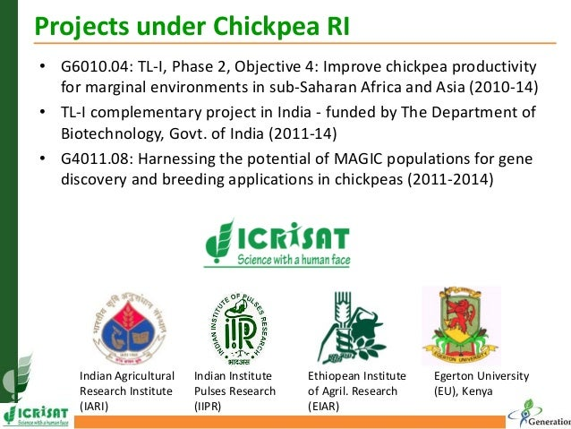 GRM 2013: Harnessing the potential of MAGIC population for gene discovery and breeding applications in chickpea  -- P Gaur Slide 3