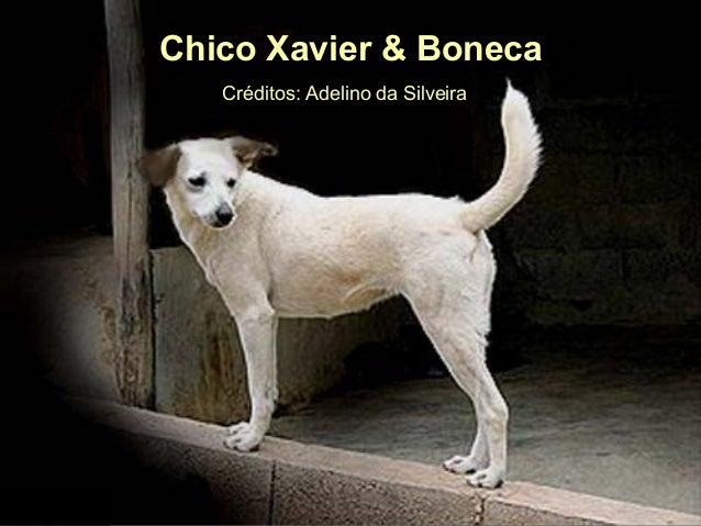 Ria Slides Créditos:AdelinodaSilveiraCréditos:AdelinodaSilveira Chico Xavier & BonecaChico Xavier & Boneca