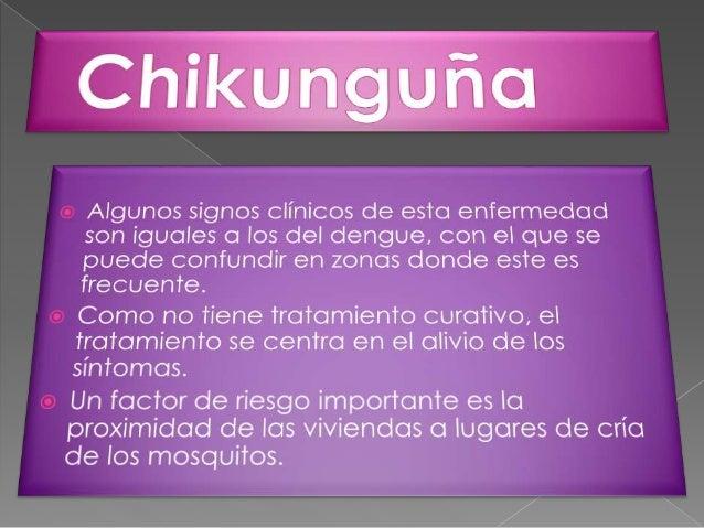 Chikunguña Slide 2