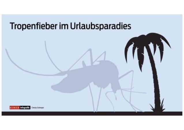 Chikungunya: Die Viruserkrankung aus den Tropen