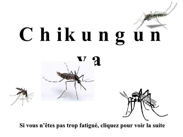 Chikungunya Si vous n'êtes pas trop fatigué, cliquez pour voir la suite